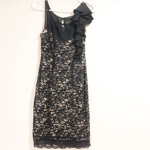The Limited Lace Overlay Dress Size Small